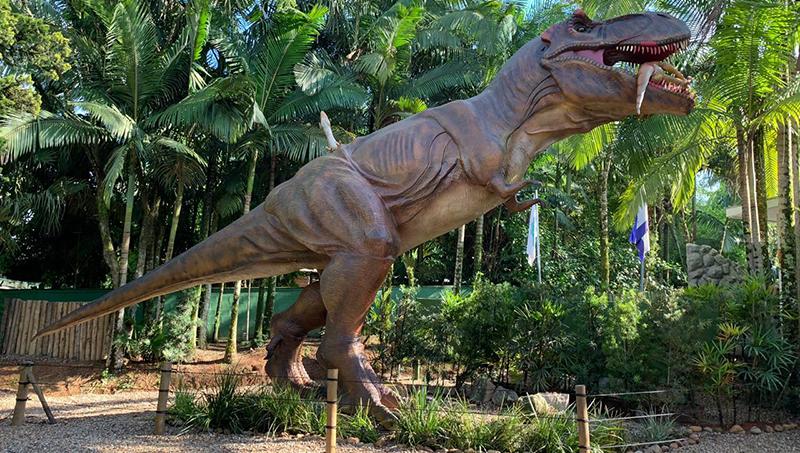Vale dos Dinossauros - Grupo Dreams